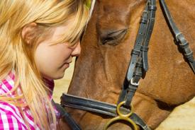 Horseback riding – a relaxing activity in Slovenia